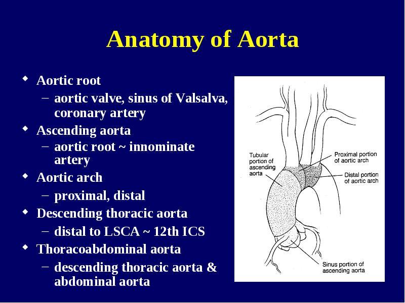 Diseases of the Aorta Seoul National University Hospital