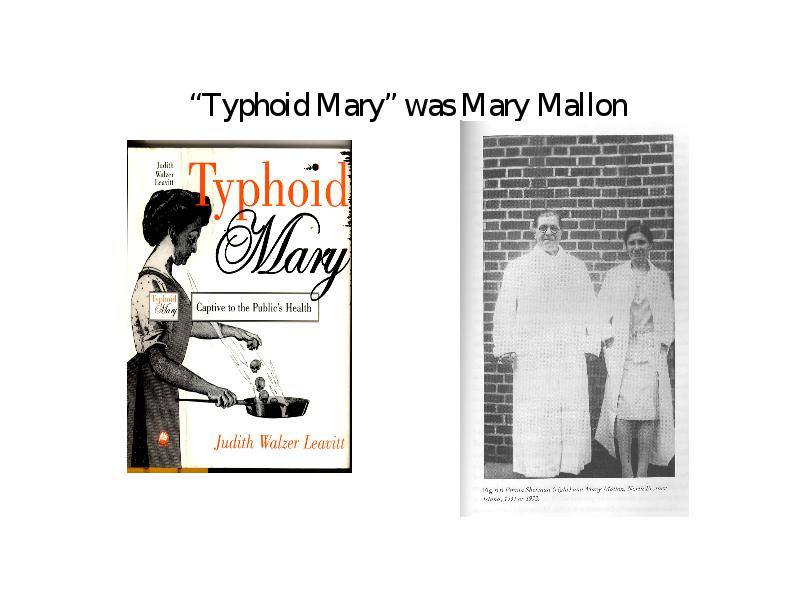 judith walzer leavitts typhoid mary Radiolab - the most horrible seaside vacation [judith walzer leavitt and david rosner] ----- in 1906, a rich family vacationing in oyster bay, ny started to get sick very sick it turns out they.
