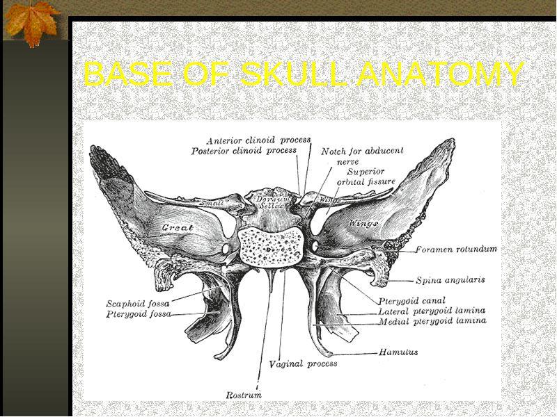 Imaging of head trauma dr. Thanh Binh Nguyen